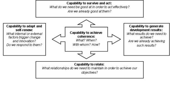 The 5 capabilities' framework (Credits: ECDPM)