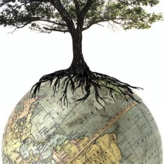 Is the world knowledge tree really growing?  (credits - unclear)