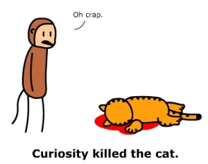 Curiosity killed the cat (Credits - Stuff by Cher)